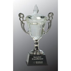 "Crystal Cup with Silver Handles and Stem (9 1/2"")"