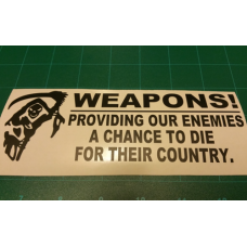 Providing Chances Decal